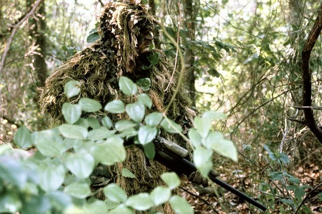marine scout sniper camouflaged forest