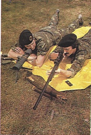 two soldiers lying on ground with rifles